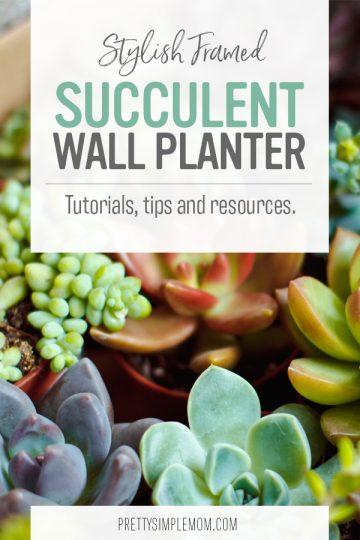 Stylish DIY Framed Succulent Wall Planter