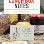 encouraging lunch box notes